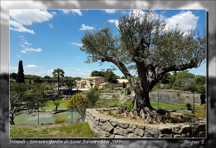 Jardin-Saint-Adrien-Servian-Hérault (8).jpg
