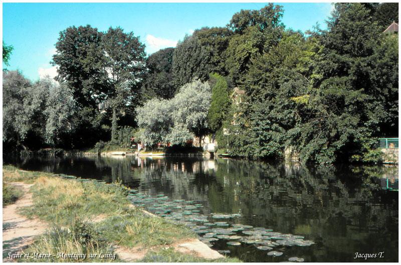 Montigny sur Loing en Seine et Marne (6).jpg